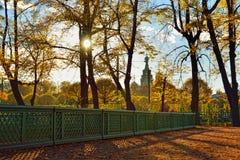 Sunset in Summer garden. Autumn in St.-Petersburg Royalty Free Stock Photo