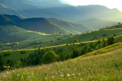 Sunset in the summer mountain valley with the beautiful rays of the sun. Natural summer landscape royalty free stock photos