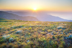 Sunset in summer mountains. Royalty Free Stock Photo