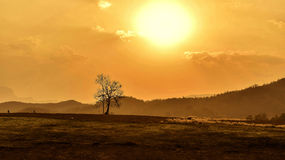 Sunset in summer Royalty Free Stock Photos