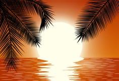 Sunset. Summer Sunset Landscape. Stock Images