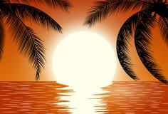 Sunset. Summer Sunset Landscape. Stock Photos