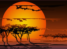 Sunset of a sun stock photo