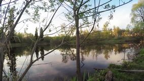 Sunset sun on a city lake stock video