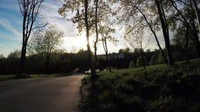Sunset sun on a city lake stock video footage