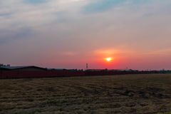 The sunset. Sun sets on the countryside Stock Photography