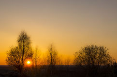 Sunset sun and silhouettes of trees. In spring in Russia Royalty Free Stock Image