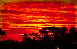 Vivid Red Sunset Royalty Free Stock Image