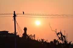 Sunset. Or sundown, is the daily disappearance of the Sun below the western horizon as a result of Earth's rotation.nnThe time of  is defined in astronomy as Royalty Free Stock Photos