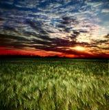 Sunset, sunrise Stock Photography