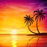 Sunset, Sunrise with Palm Trees. A Beautiful Sunset, Sunrise with Palm Trees - Vector EPS 10 Stock Photos