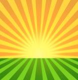 Sunset sunrise radial. Background yellow and green stock illustration