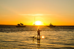 Sunset SUP Australia. SUP in Australia during sunset Stock Images