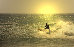 Sunset surf. Er in the wave Royalty Free Stock Photos