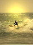 Sunset surf. Er in the wave Royalty Free Stock Image
