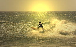 Sunset surf Royalty Free Stock Photo
