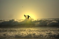 Sunset surfer Royalty Free Stock Photography