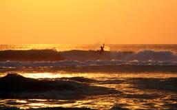 Sunset Surfer. Surfer rides waves at sunset, Bali, Indonesia stock image