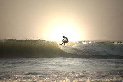 Sunset surfer. On top of the wave Stock Photography