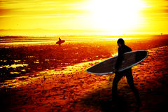 Sunset surfer Stock Photography