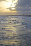 Sunset Surfing at Folly Beach Stock Photography