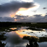Sunset in the swamps of Charleston. Royalty Free Stock Images