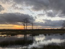 Sunset in the swamps. Giant orange sun sets behind the bayou of a cypress swamp and reflects in the river stock image