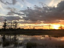 Sunset in the swamps. Giant orange sun sets behind the bayou of a cypress swamp and reflects in the river stock images