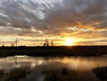 Sunset in the swamps. Giant orange sun sets behind the bayou of a cypress swamp and reflects in the river royalty free stock photo