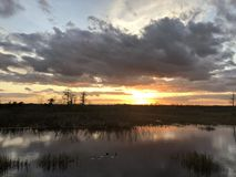Sunset in the swamps. Giant orange sun sets behind the bayou of a cypress swamp and reflects in the river stock photography