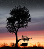 Sunset Swing. A sunset with a swing on a tree looking into a field Royalty Free Stock Images