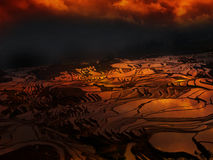 Sunset at terraced rice fields, China Stock Image