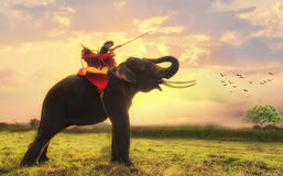 Sunset Thai countryside Royalty Free Stock Photography