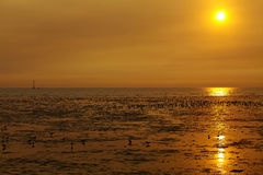 Sunset in Thailand Royalty Free Stock Photography