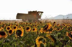 Sunset threshing Stock Image