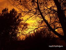 Sunset threw trees. Fall time of sunset after storm Royalty Free Stock Photos