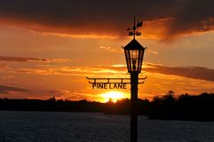 Sunset thru Lamp Post. Lake Sunset thru Pine Lane Lamp Post Stock Photography
