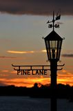 Sunset thru Lamp Sign. Sunset thru Pine Lane Lamp Silhouette Royalty Free Stock Photo