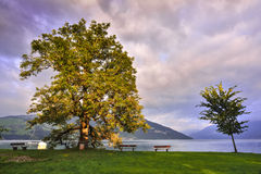 Sunset in Thun Royalty Free Stock Images