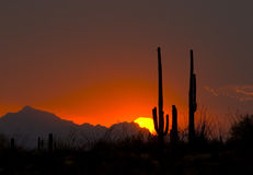 sunset thundershower Obrazy Stock