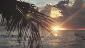 Sunset time at Anse Lazio beach, Praslin, Seychelles. Beautiful sunset over the famous beach Anse Lazio, Praslin island, Seychelles stock video footage