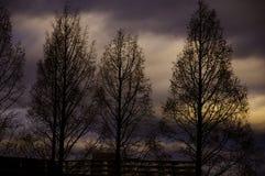 Sunset time Royalty Free Stock Image