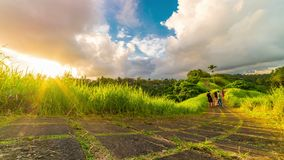 Sunset timelapse and People walk on Campuhan Ridge Walk, path on top of grassy hill. Popular trekking place in Ubud stock video footage