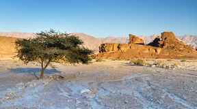 Sunset in Timna Park, Israel Stock Images