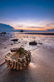 Sunset at tioman beach Stock Photography