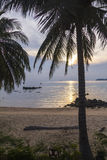Sunset Tioman Island palm Royalty Free Stock Photography