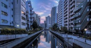 Sunset at Tokyo royalty free stock images