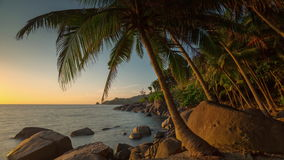 Sunset tourist phuket palm beach panorama 4k time lapse thailand stock video footage