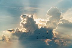 Sunset with towering cumulus clouds and a flock of bird in the f. Oreground stock image