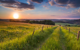 Sunset trail germany hill Stock Images